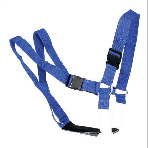 AgriHealth Standard Ram Harness