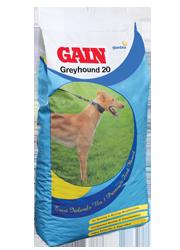 Gain Greyhound 20