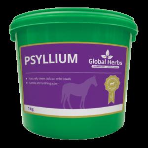 Global Herbs Psyllium
