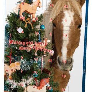 Hatchwells Advent Calendar for Horses
