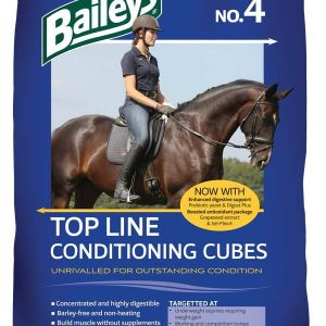 No 4 Top Line  Conditioning Cube