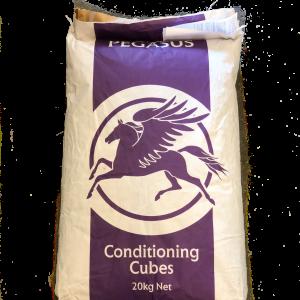Pegasus Conditioning Cubes