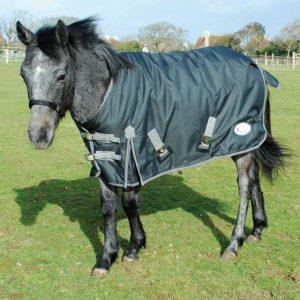 Rhinegold Breathable Konig Small Pony/Foal Outdoor Rug