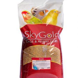 SkyGold Quality Budgie